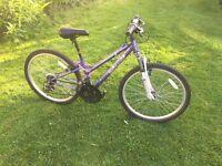 "Purple Girls Bike 24"" Wheels good condition £25"