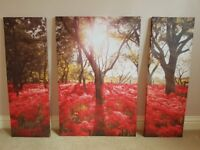 3 picture wall canvas