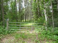 TRAVERSE BAY-82.50 ACRE TREED LOT WITH APPROACH/CABIN/SMALL POND