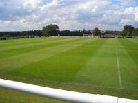 GROUNDSMAN, VARIOUS SPORTS PITCHES