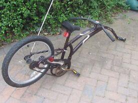 Maroon Adams Trail a Bike