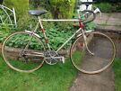Vintage Retro BSA Premier 12 speed Road Bike,60cm frame,700c wheels/New tyres