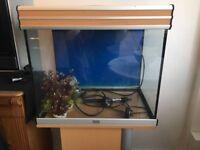 Fish tank - 90L