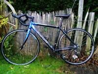 Carrera Race/Road bike