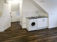 NEWLY RENOVATED SPACIOUS STUDIO FLAT IN THE POPULAR AREA OF ACTON. DSS ACCEPTED!