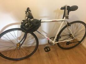 Fixie to single speed bike
