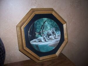 Collectible Plates & Frames - Wild Cats London Ontario image 3