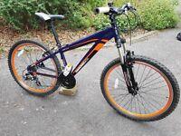 Diamond Back teenage/adult mountain bike