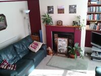 Large, light, room available in spacious 4 -bed house share
