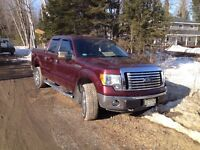 2010 Ford F-150 $21 000