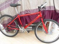 ADULTS RALEIGH MAX MOUNTAIN BIKE IN GOOD CONDITION.