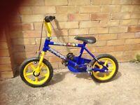 Blue child's starter bike