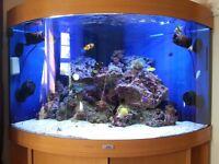 190L Jewel Corner Marine Fish Tank Full set-up
