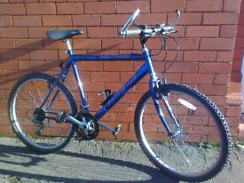 Emmelle mountain bike - 20 inch frame , ready to ride .