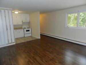 BETWEEN PORTLAND AND PLEASANT ST - 2 BEDROOM - 49 OLD FERRY ROAD