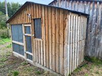 Custom built kennel