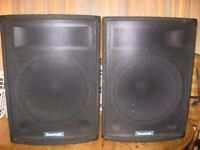 SOUNDLAB 15'' speakers