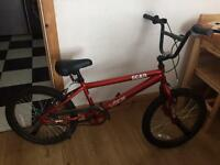 Red scar bike
