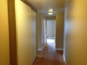 RARE 3 BD APARTMENT IN CENTRAL LOCATION! 114-17 Eldon Hall Pl Kingston Kingston Area image 6