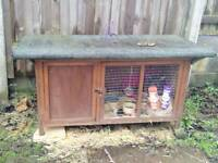 Rabbit hutch with two lovely rabbits