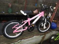 girls pink carrera bike
