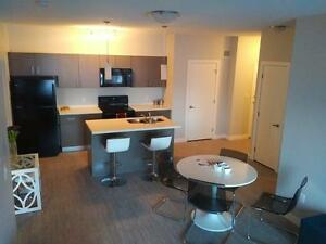 Brand New 2 Bd 2 Bath, In Suite Laundry & A/C~Fort Saskatchewan