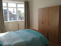 Large Double Room - Bright & Clean - Available now until 12th August