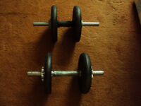 4 x 5kg York Cast Iron Weights With Dumbells