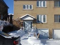 Maison - à vendre - LaSalle - 12259316