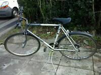 Men's raleigh hybrid bike