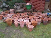 Over 100Terracotta plant pots various sizes