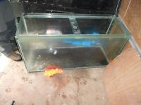 Large thick Toughened Glass Fish or Snake Tank