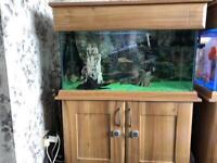 Full set up 3ft Tropical fish tank