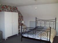 Super-size, en suite Furnished Room for a nonsmoking Professional - Available Now!