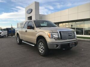 2010 Ford F-150 XLT, Only 70, 562 kms, Hard Cover, One owner!!! Windsor Region Ontario image 2