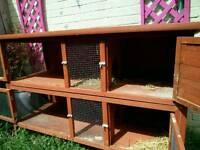 Rabbit hutch 2 tier used