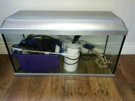 100L fish tank and accessories