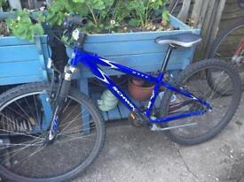 Bike 14inch frame
