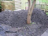 Garden Top Soil