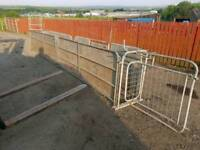 16ft sheep handling race with shedder and guillotine farm livestock tractor