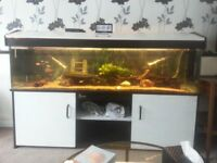 Complete tropical fish tank set up..6ft by 18 inch..288 litres