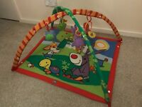 Tiny Love Gymini Kick & Play activity mat Baby Play Mat / Gym / Arch