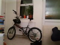 Foldup bike for sale (new)