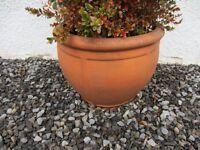 Terracotta Garden Pots (Pair)