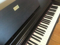 Electric Piano/Keyboard (Full Size) Celviano AP-38