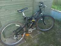 Raleigh Bandicoot mountain bike