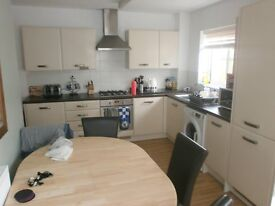Room St Ives Cambs Immaculate, near guided bus pubs A14 excellent modern standard