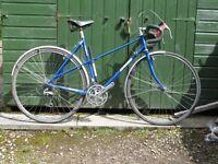 Dawes Galaxy 21 inch ladies touring bike.