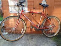 """Mens Raleigh mountain bike with 26"""" wheels and 10 Shimano gears, Great winter bike, Only £20"""