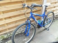 ladies argonaurt spike mountain bike, great bike, good condition, bargain £45, can deliver